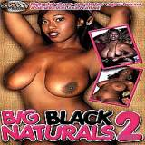 Big Boobs : Great large Black Naturals two porno